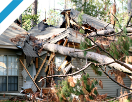 DISASTER RECOVERY AND RESTORATION